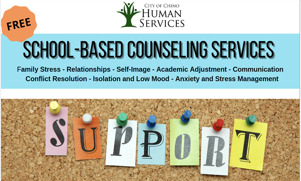 School Based Counseling Services