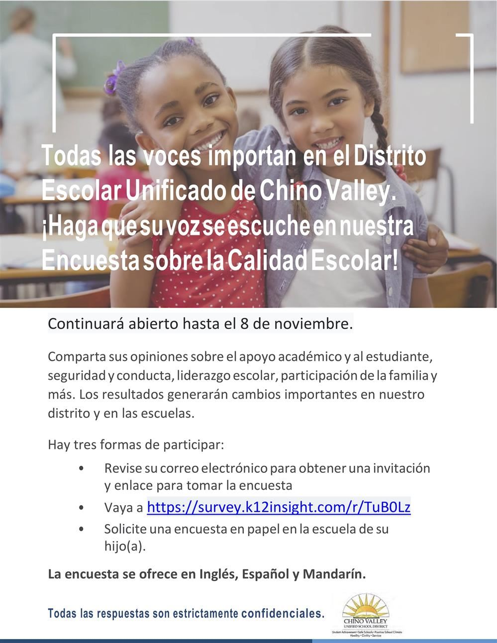 Online Parent Survey 2019 (Spanish)