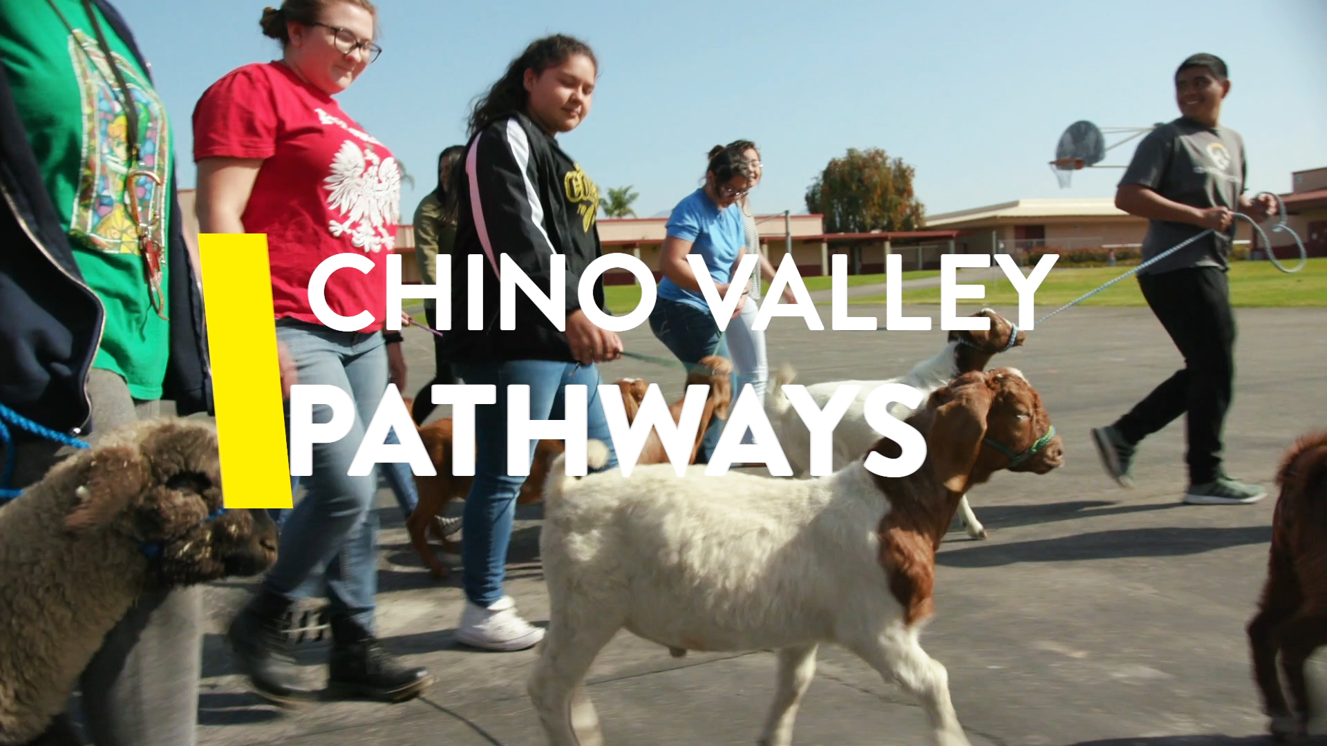 Chino Valley Unified School District District Homepage